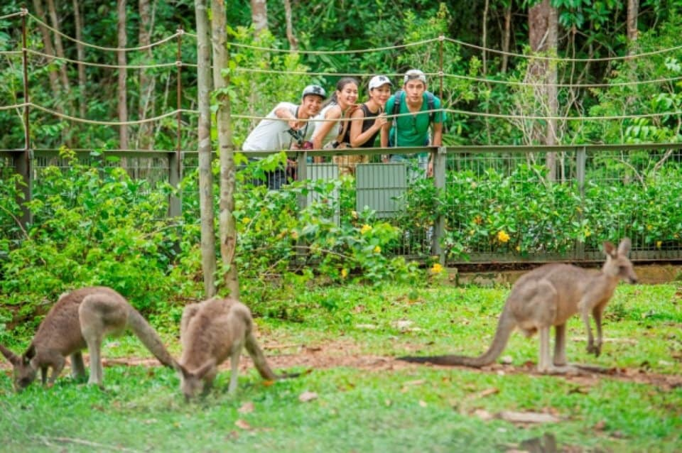 Review Vinpearl Safari Phú Quốc
