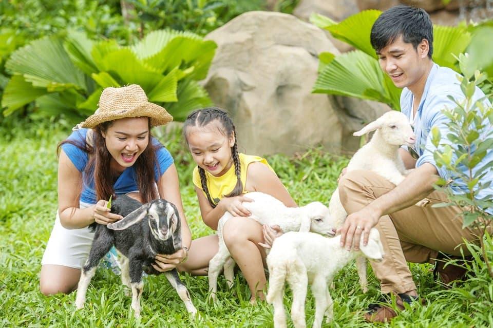 Vui chơi với các bé thú nhỏ tại Vinpearl Safari Phú Quốc